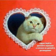 Василий Михайлович Ступин
